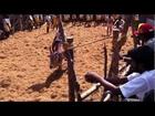 ALANGANALLUR JALLIKATTU 2013 (Madurai, India) by shiva 2