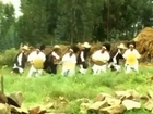 ENGIDA NEGN New Ethiopian Music Video